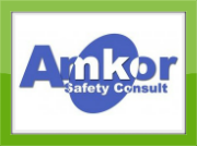 Amkor Safety Consult